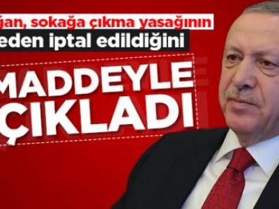Erdoğan, sokağa çıkma kısıtlamasının neden alındığını ve hangi sebeple iptal edildiğini 2 maddeyle açıkladı