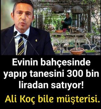 Evinin bahçesinde yapıp tanesini 300 bin liradan satıyor!
