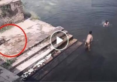 Çocuklar Gölette yüzerken, Şok Görüntü Üç harfli Suya Atlıyor Dikkatle İzleyin.